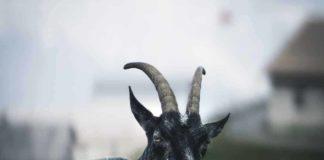 Oração da cabra preta